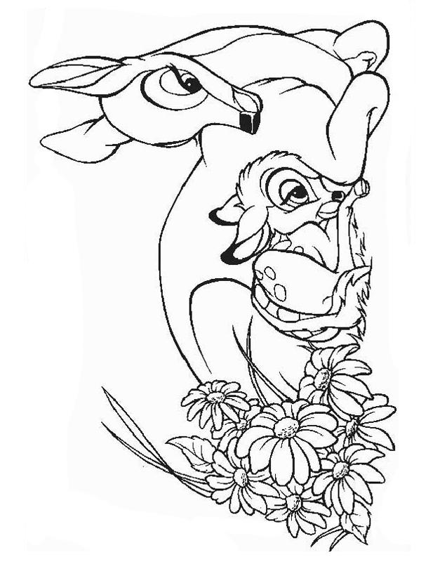 Bojanke Za Decu Bambi